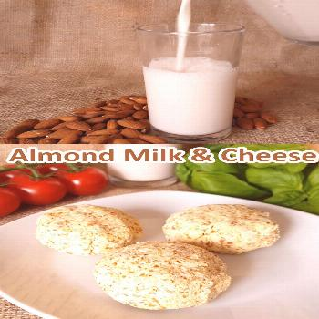 Almond Cheese and Milk Almond Milk and Almond Pulp Cheese Recipes that use the pulp after making al