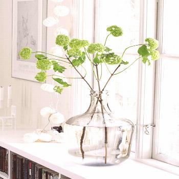 PANTONE GREENERY - Concepts and Colorways -  bright green flowers in white window sill, pantone gre