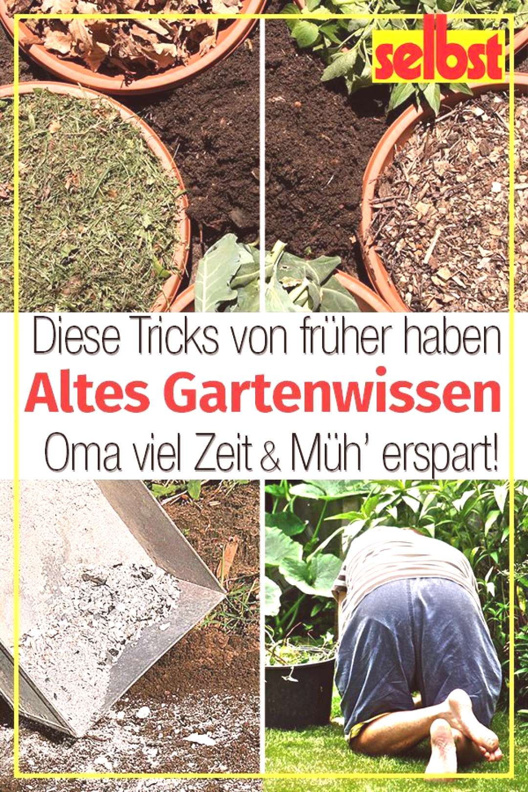 Gardening tips |  -  I would have used these gardening tips well at the start of the season: How ol