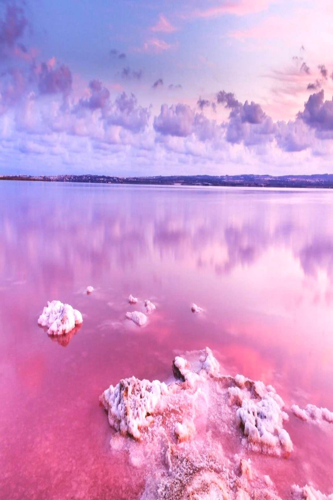 The Pink Lake and Alicante's historic quarter